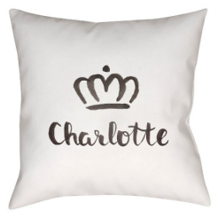 charlotte city pillow target decorative white pillow